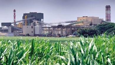 IFC, a member of the World Bank Group, is partnering with leading sugar producers in Pakistan to boost the sustainability and efficiency of their sugarcane production