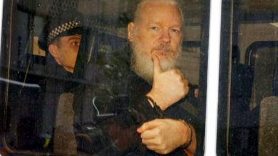 A UN rights experts has said the arrest of Wikileaks co-founder Julian Assange by police in the United Kingdom, after the Ecuadorian Government decided to stop granting him asylum in their London embassy, exposed him