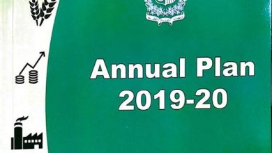 annual plan domestic product 4 fiscal year