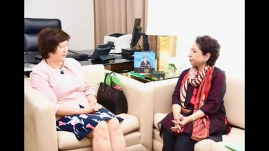Maleeha Lodhi briefing security council president