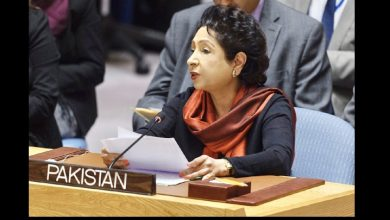 maleeha lodhi applause in UNSC