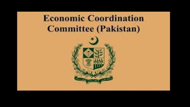 economic coordination committee Ecc approved