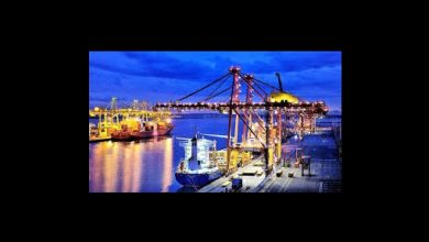 Ministry maritime affairs foreign shipping companies