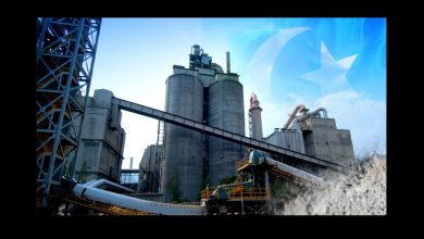 cement sector growth increase