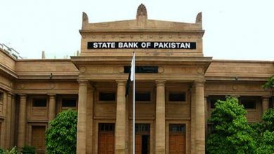 SBP Second Quarterly Report FY20 stabilization efforts